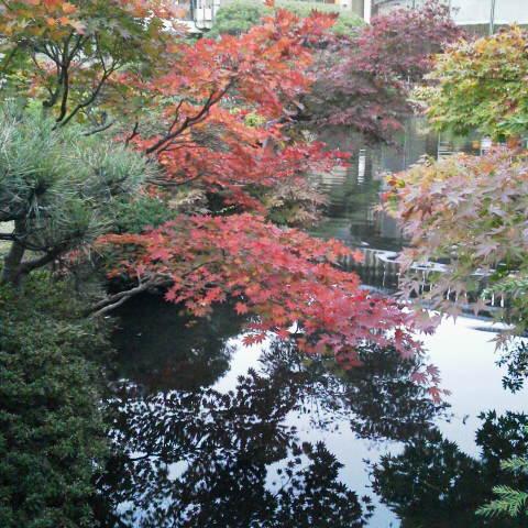 旅館の庭@磐梯熱海
